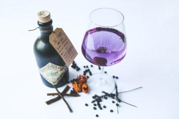 Unser Erfahrungsbericht mit dem Illusionist Gin
