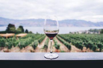 Astoria Wein gehört zu den wichtigsten italienischen Weinen